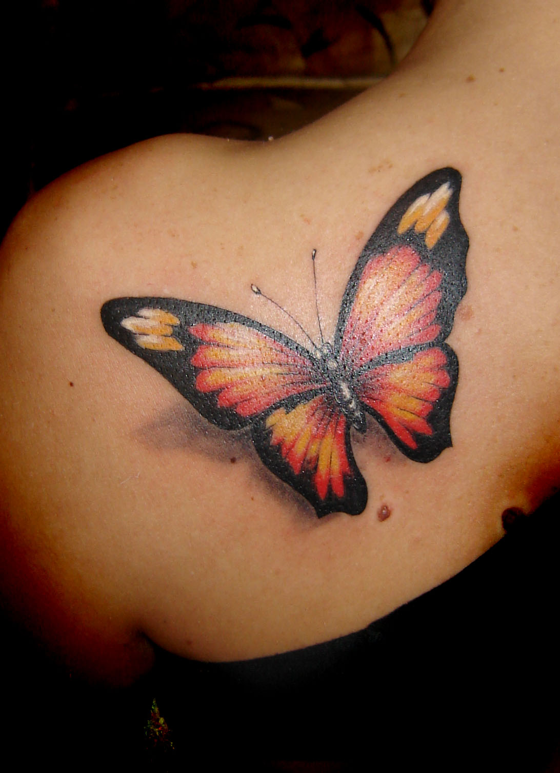 Butterfly Tattoos Designs, Ideas And Meaning