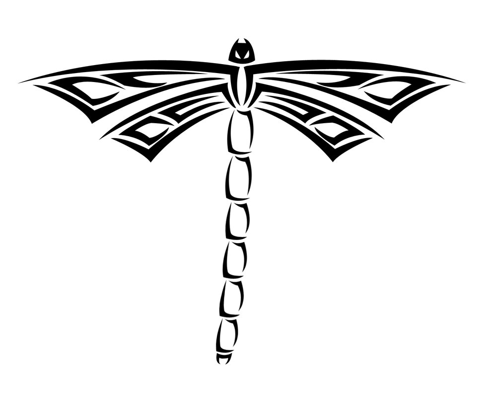 Celtic Dragonfly Drawings Celtic Dragonfly Tattoo