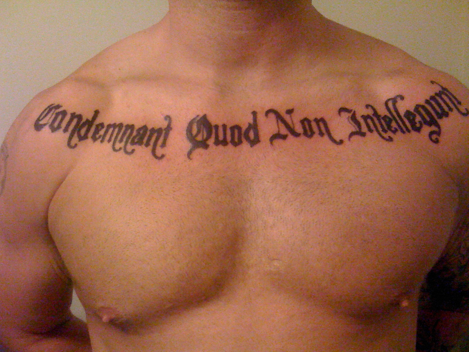 Quote Tattoos On Chest For Girls Quote Tattoos D...