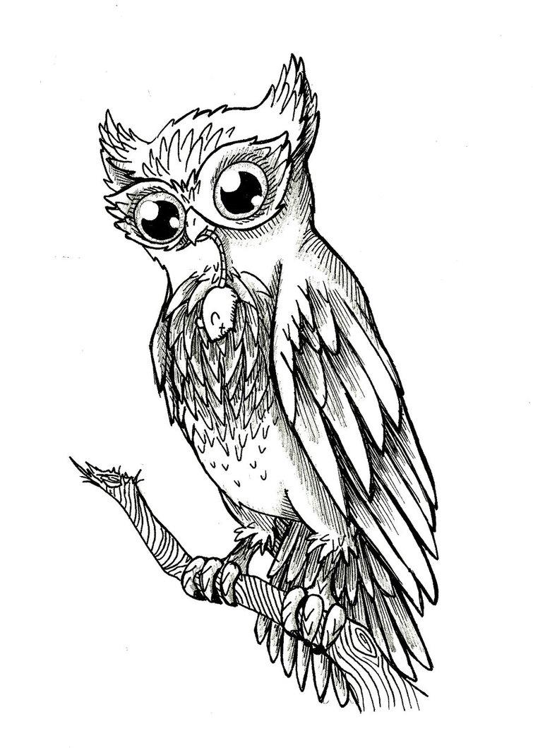 Cool owl drawings - photo#24
