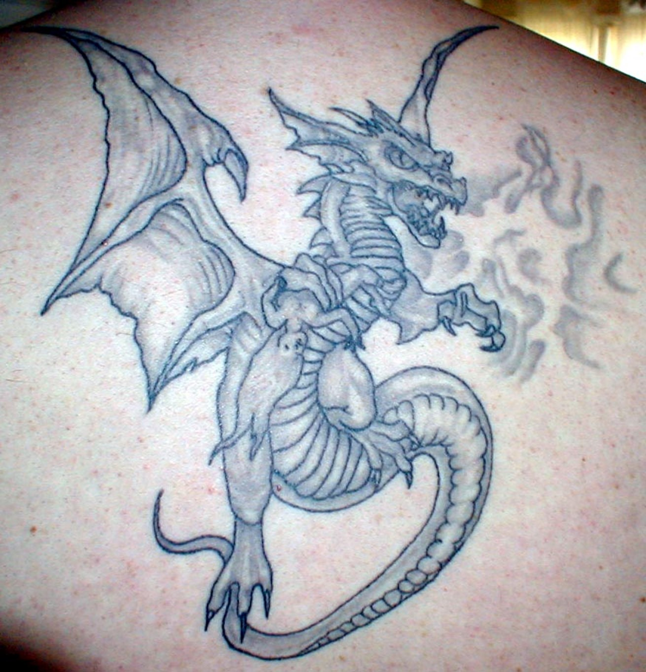 Designs And Tattoo Ideas: Dragon Tattoos Designs, Ideas And Meaning