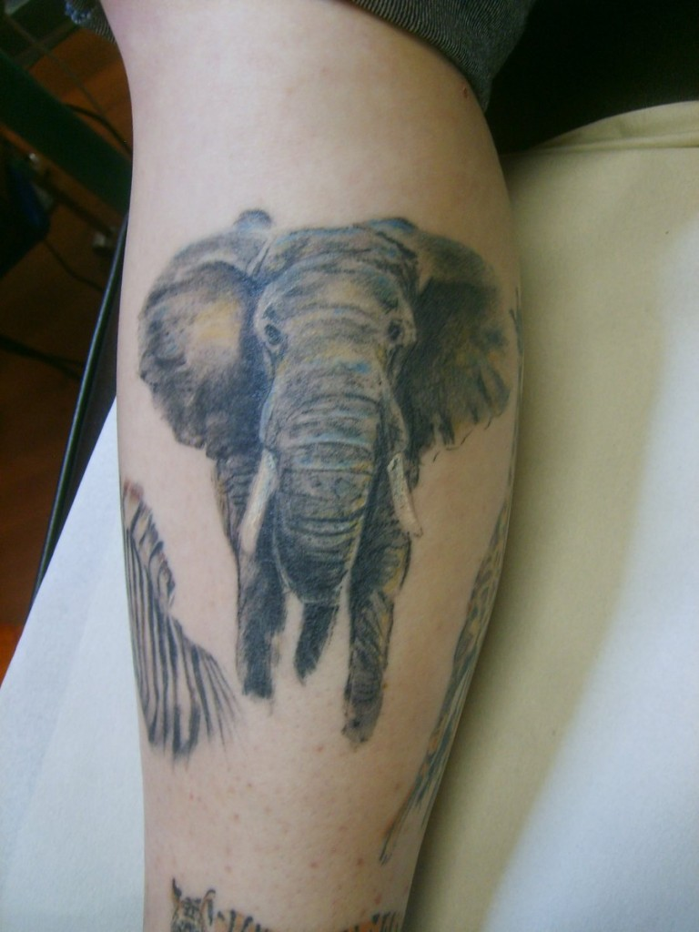 Elephant tattoos designs ideas and meaning tattoos for you for Elephant tattoo meaning family