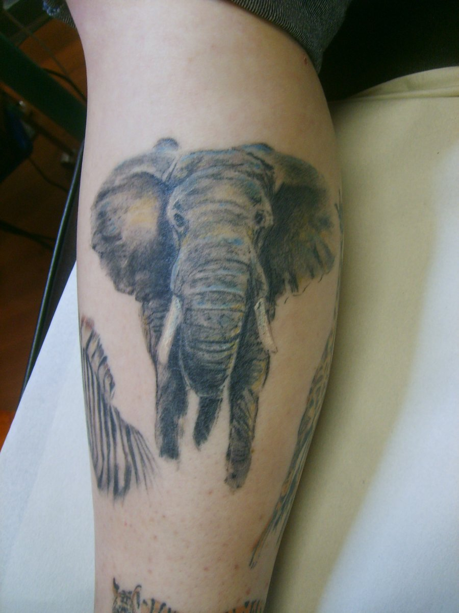 Elephant tattoos designs ideas and meaning tattoos for you for Tattoo ideas and meanings