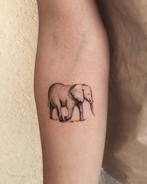 Elephant Tattoos Designs Ideas And Meaning