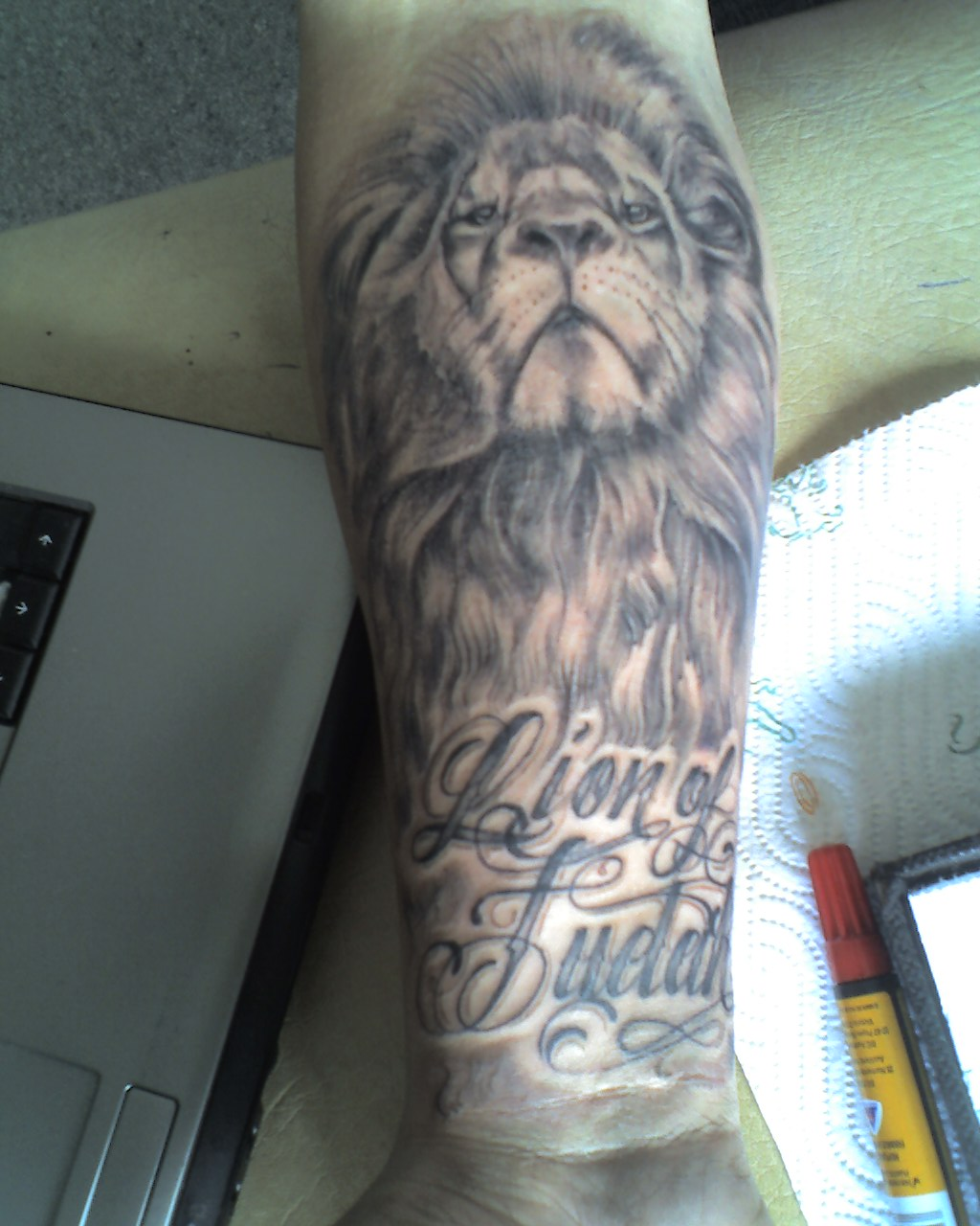 Lion Sleeve Tattoo Designs