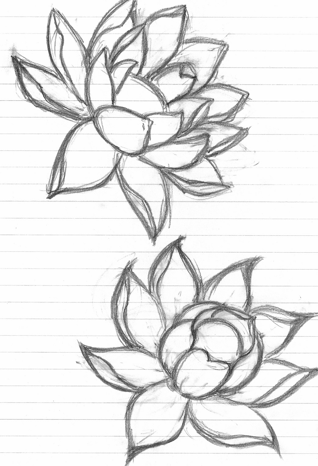 Beautiful Flower Line Drawing : Lotus tattoos designs ideas and meaning for you