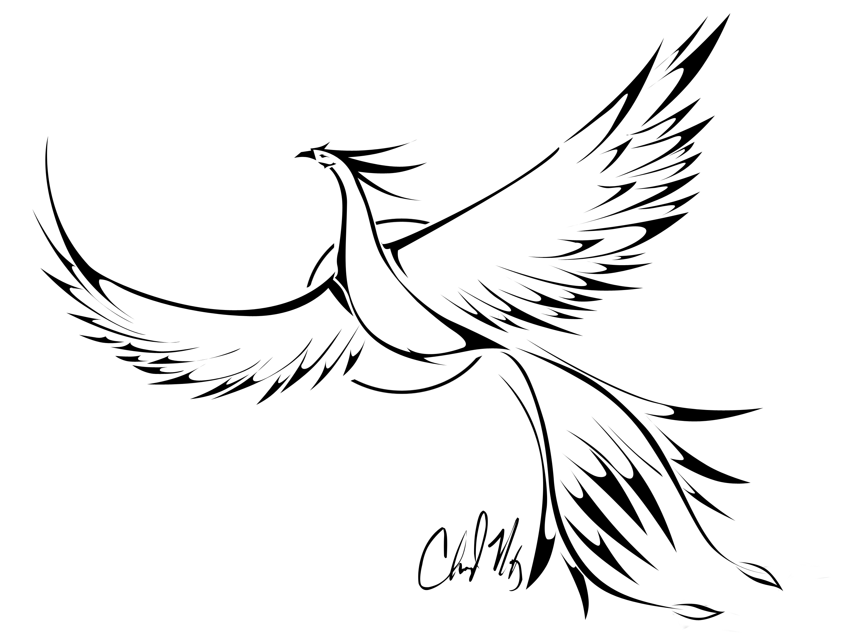 Drawing Lines Meaning : Bird tattoos designs ideas and meaning for you