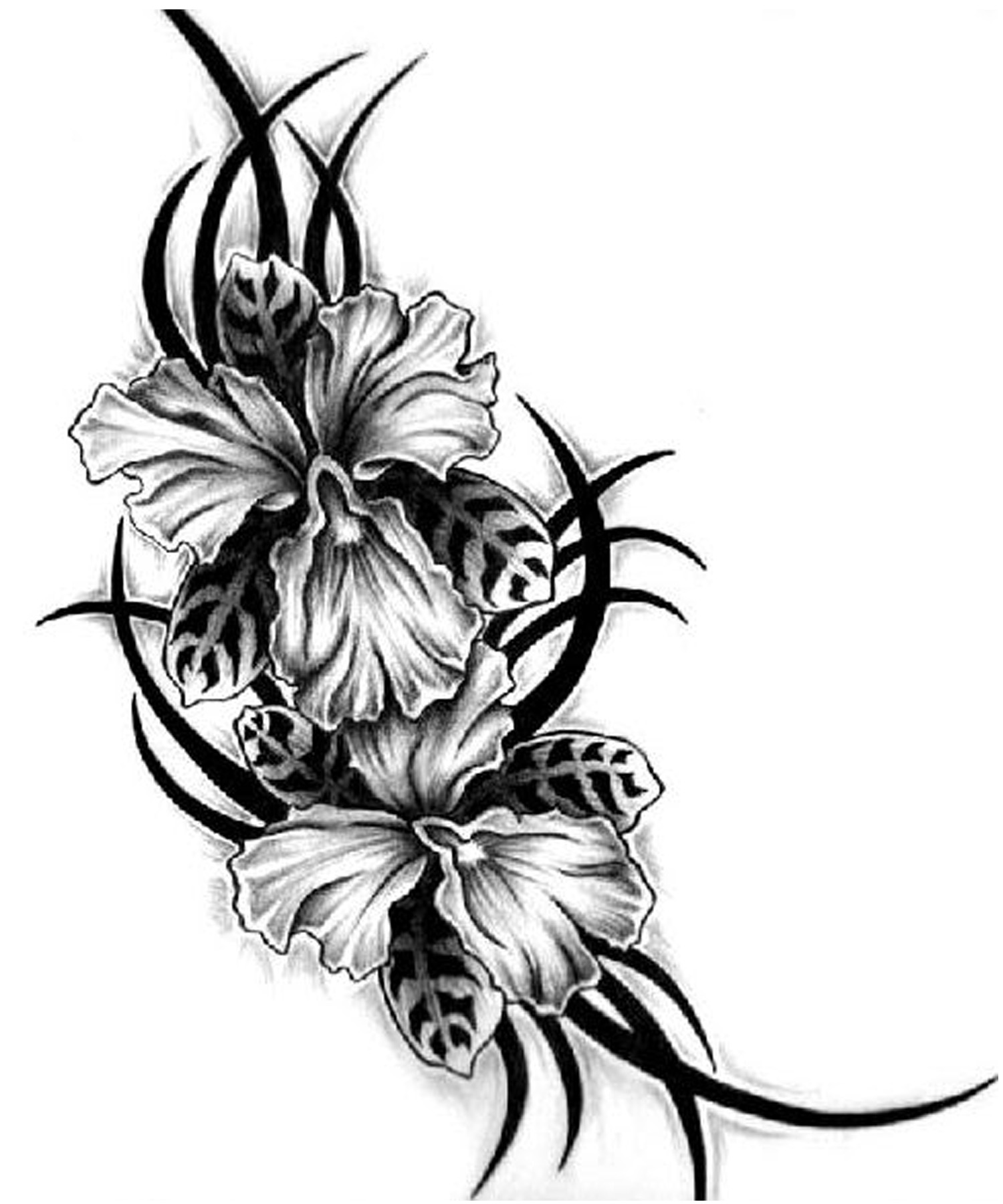 Flower Tattoos Designs Ideas and