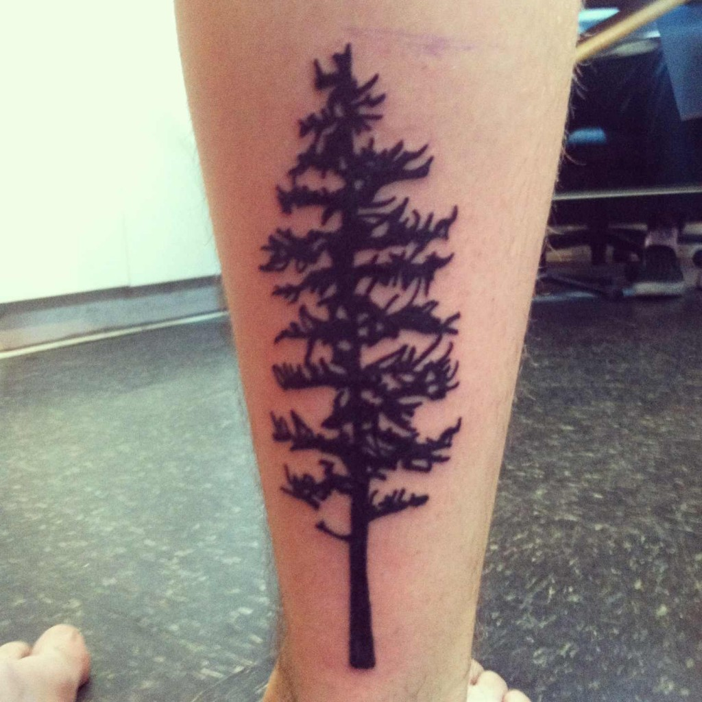 white pine tree tattoo the image kid has it. Black Bedroom Furniture Sets. Home Design Ideas