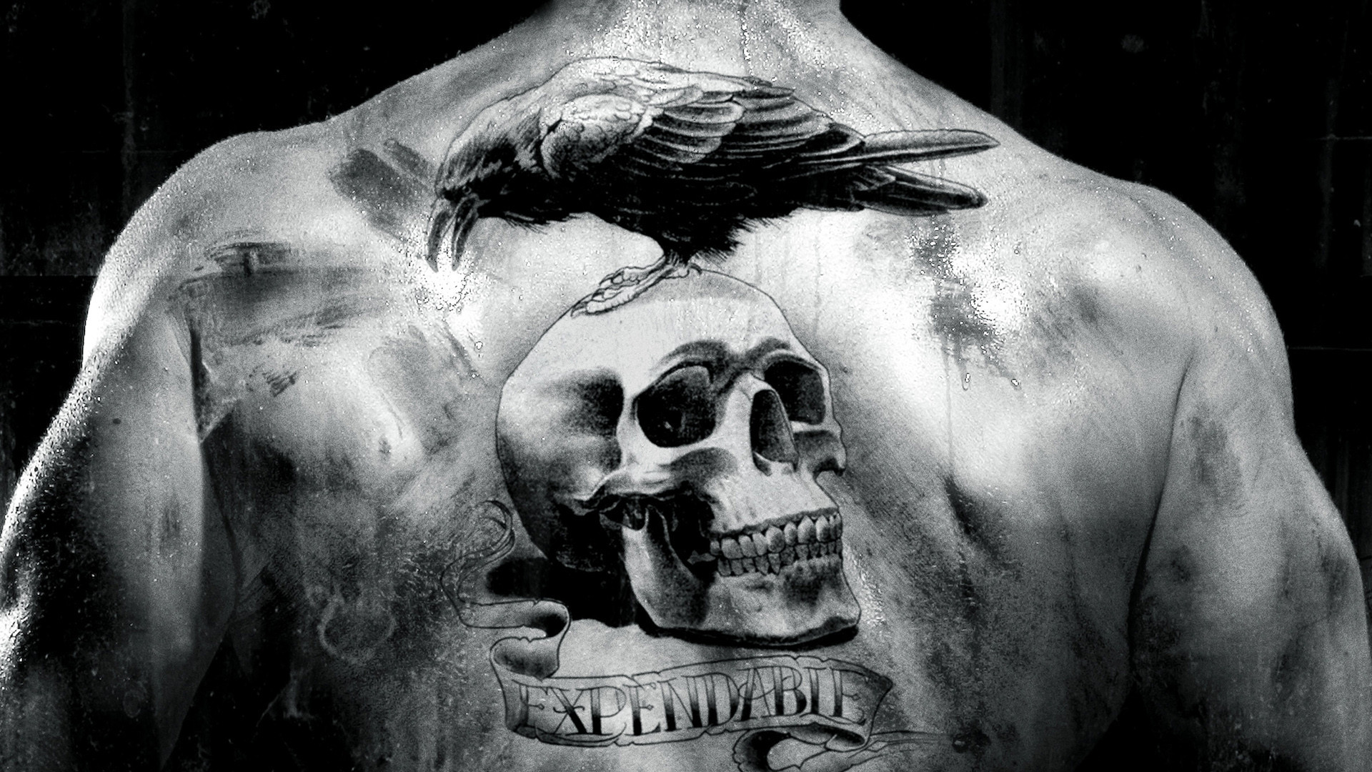 Skull tattoos designs ideas and meaning tattoos for you for Skull sun tattoo