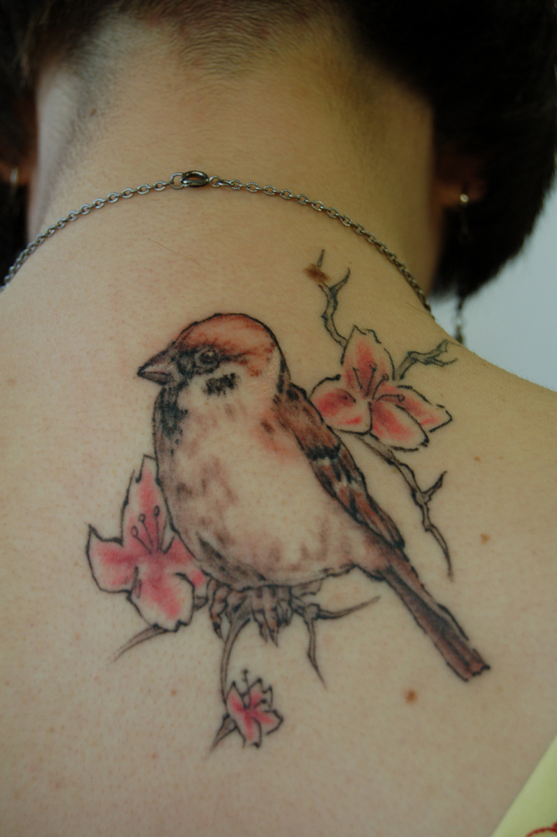 Sparrow Tattoos Designs Ideas And Meaning  For You