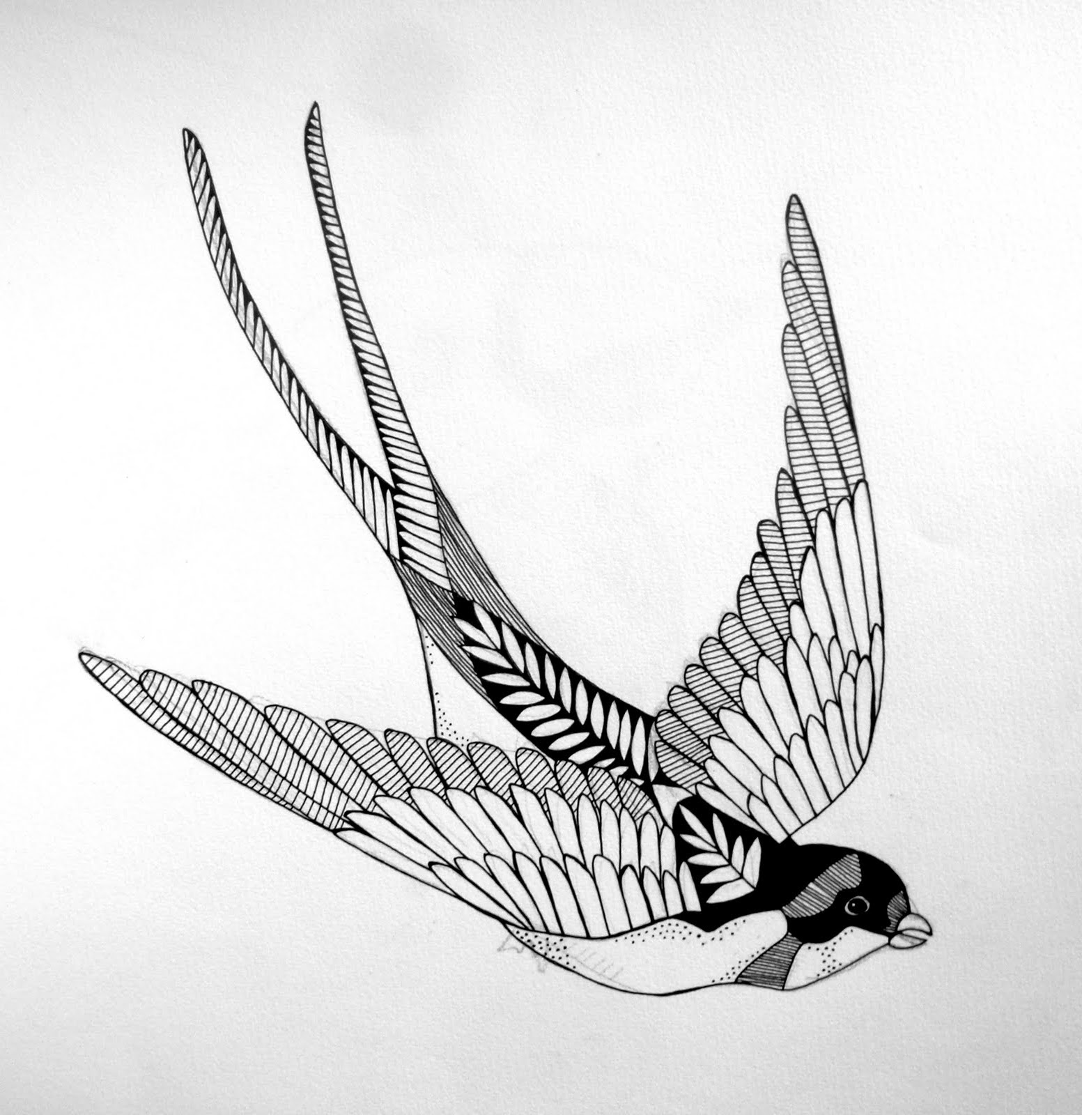 Swallow Tattoo Line Drawing : Swallow tattoos designs ideas and meaning for you