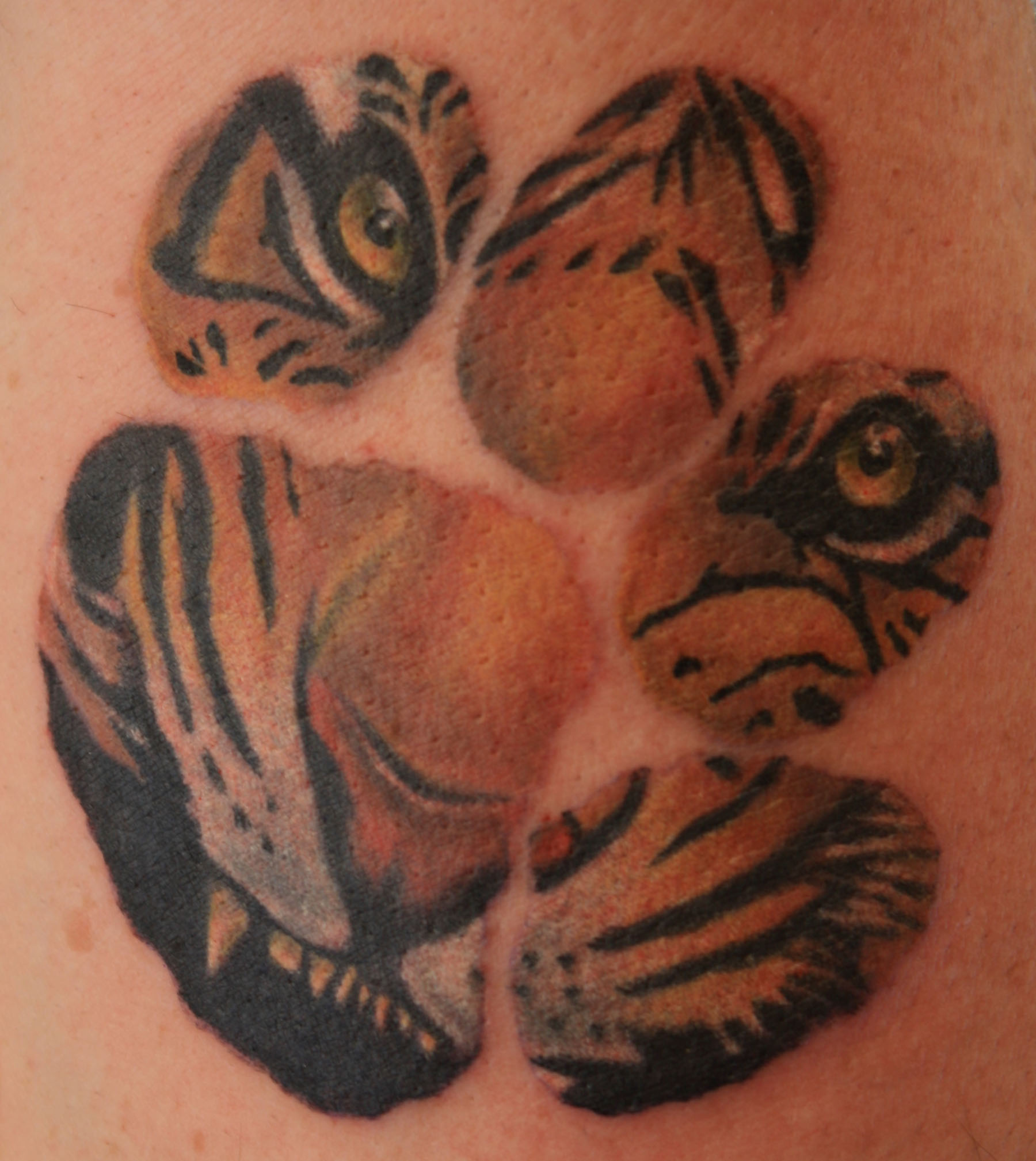 Tiger Tattoos Designs, Ideas And Meaning