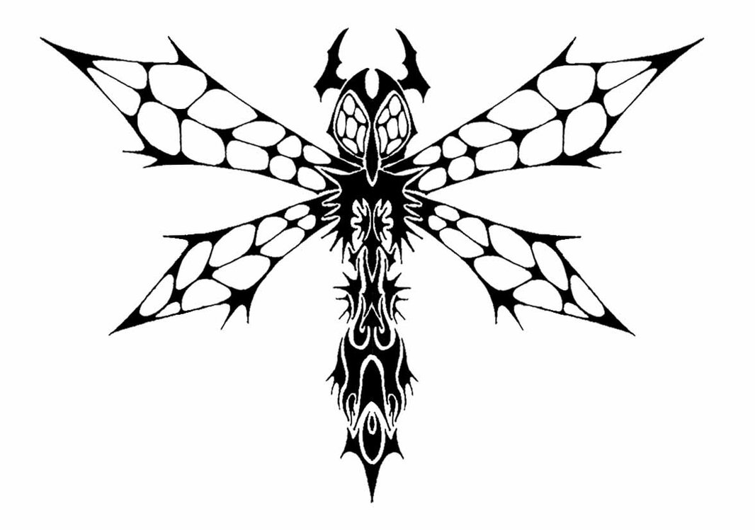 Celtic Dragonfly Drawings Tribal Dragonfly Tattoo
