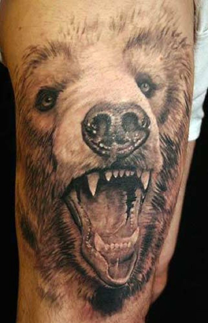 tattoo bear designs tribal grizzly Bear For  You Tattoos Meaning and  Ideas Tattoos Designs,