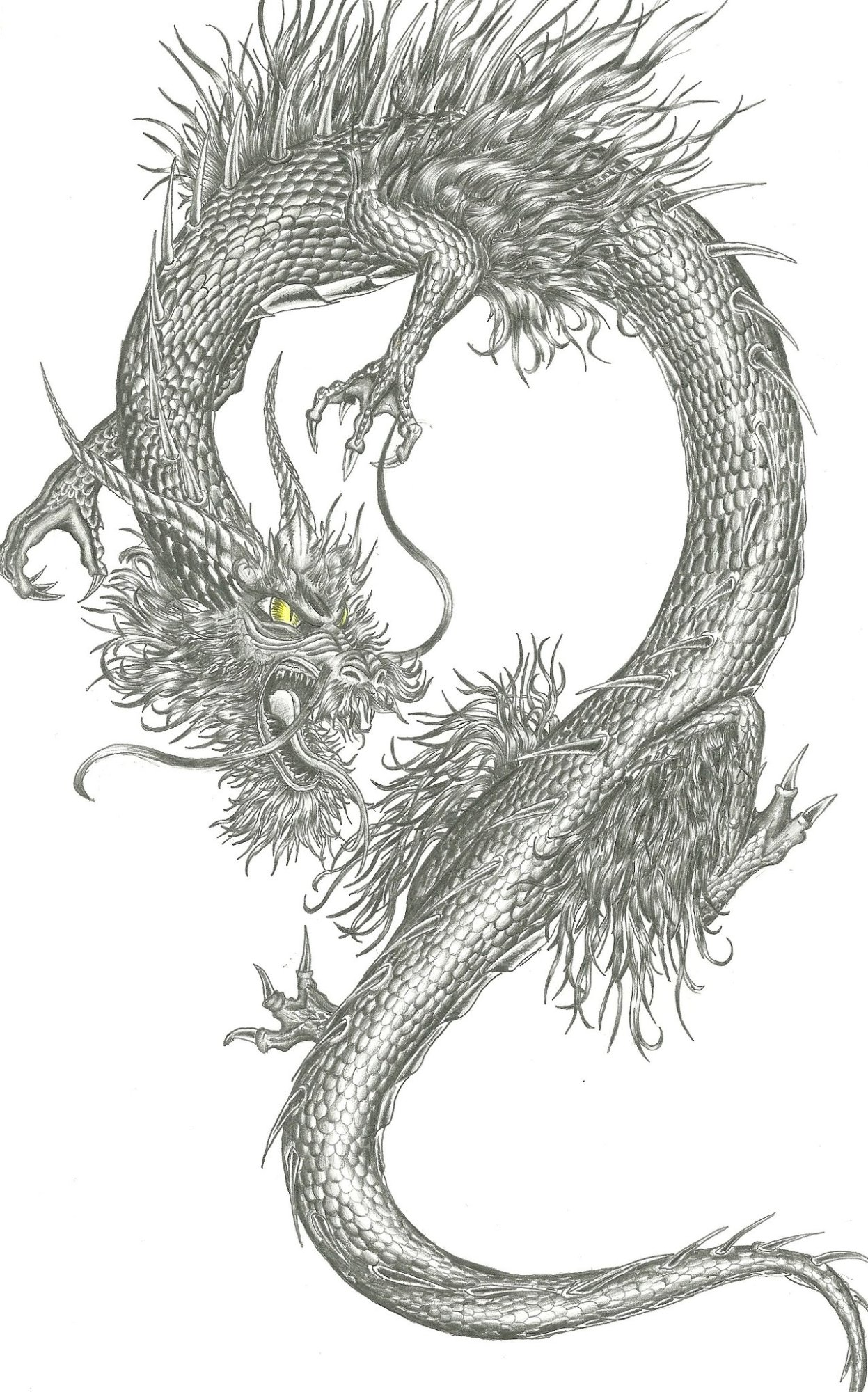 Chinese tattoos designs ideas and meaning tattoos for you for Dragon tattoo drawings