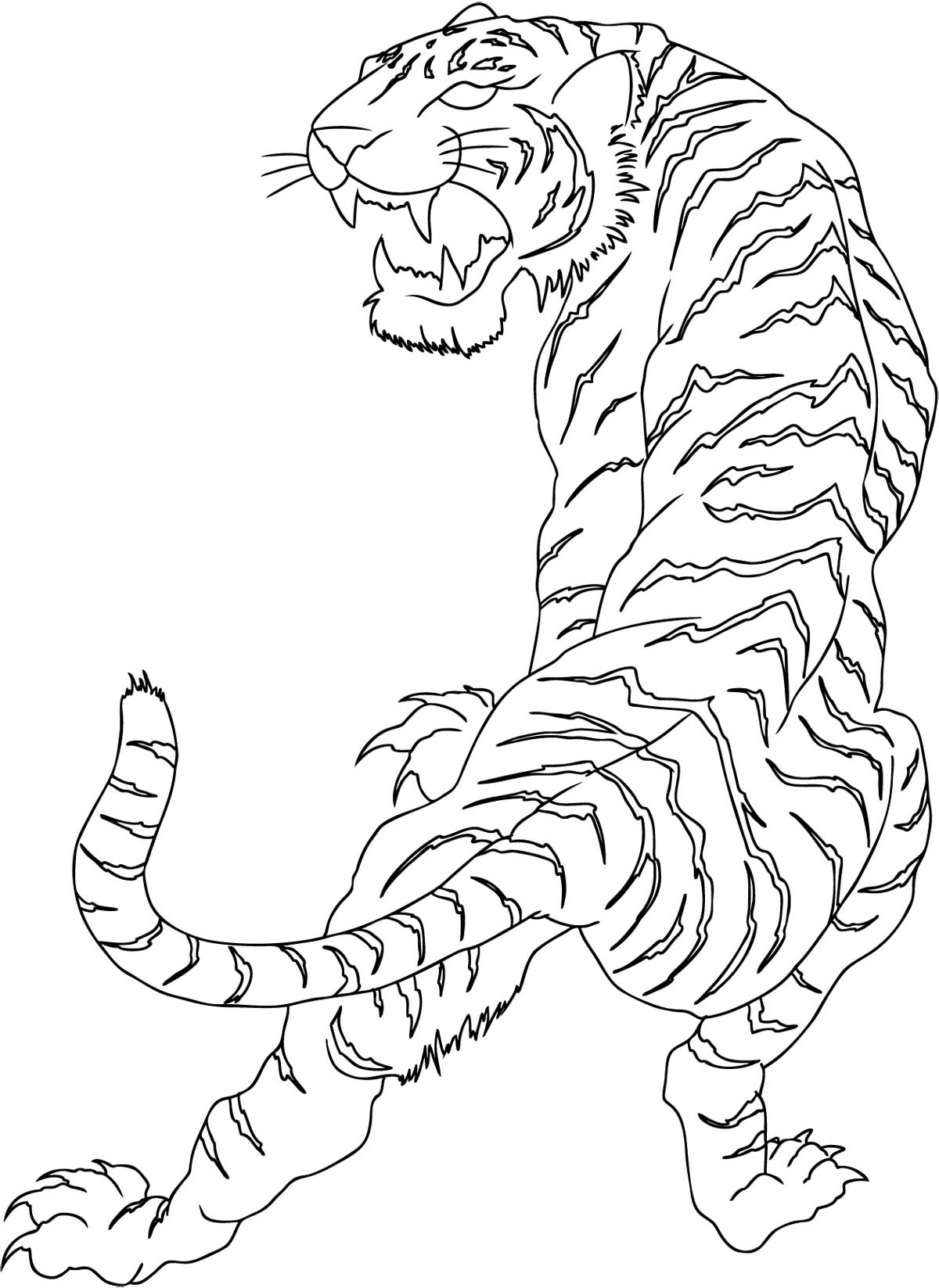 Line Drawing Tiger : Chinese tiger line drawing pixshark images
