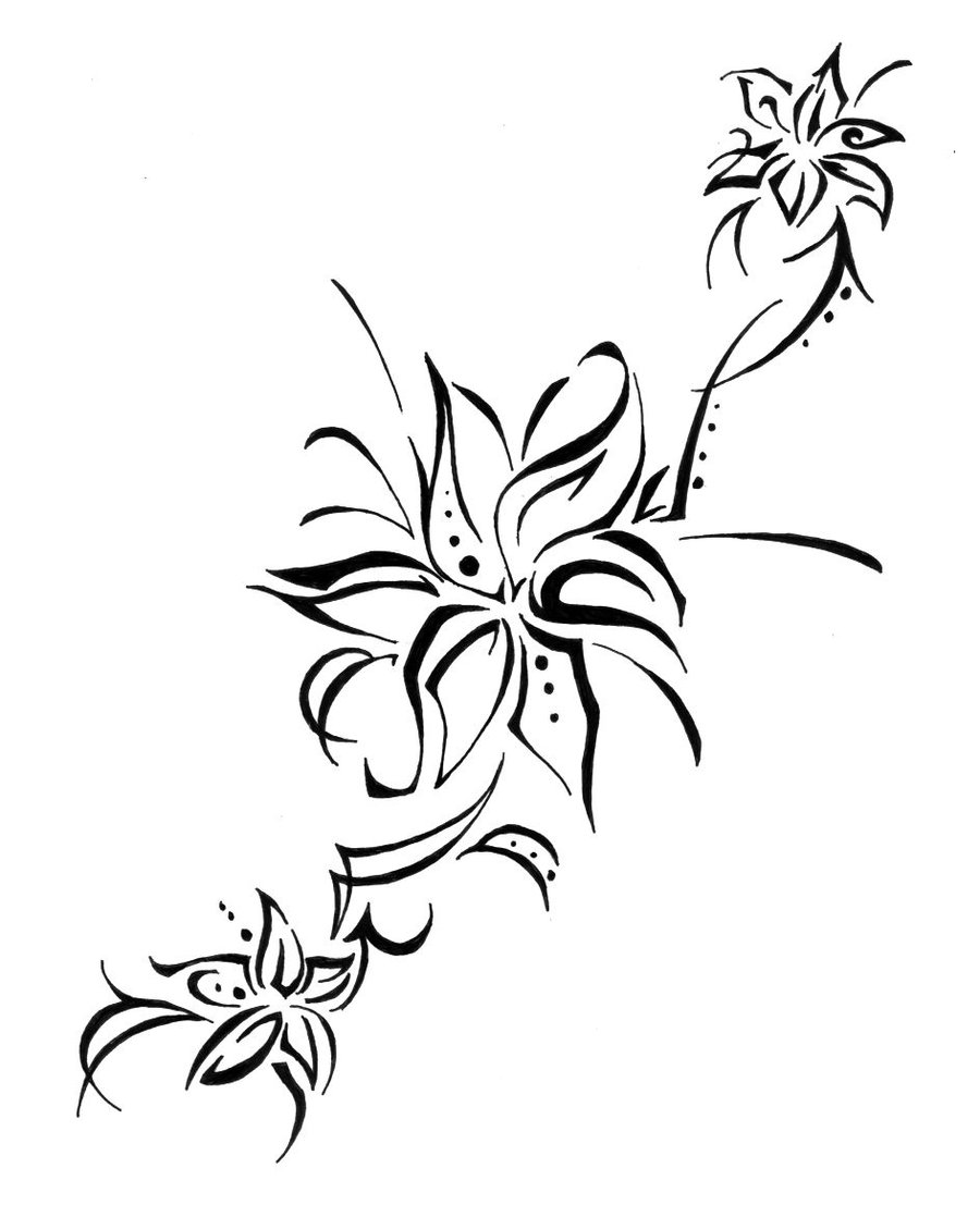 Lily Tattoo Line Drawing : Lily tattoos designs ideas and meaning for you