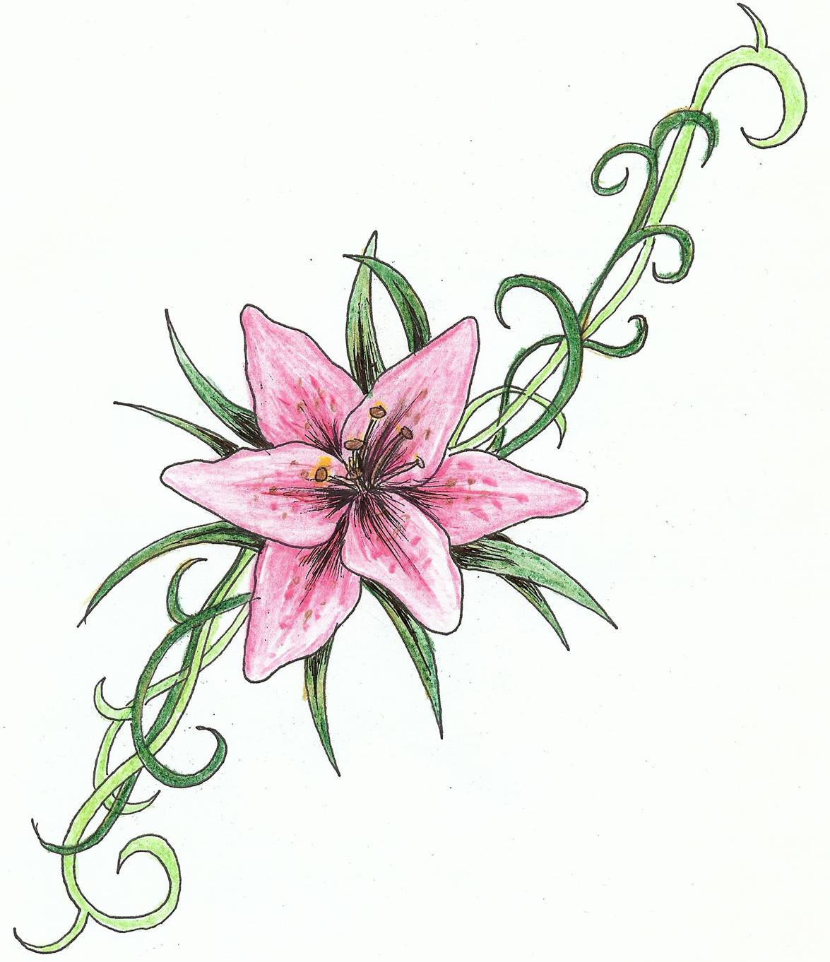 Flower meanings lily - Lily Tattoo