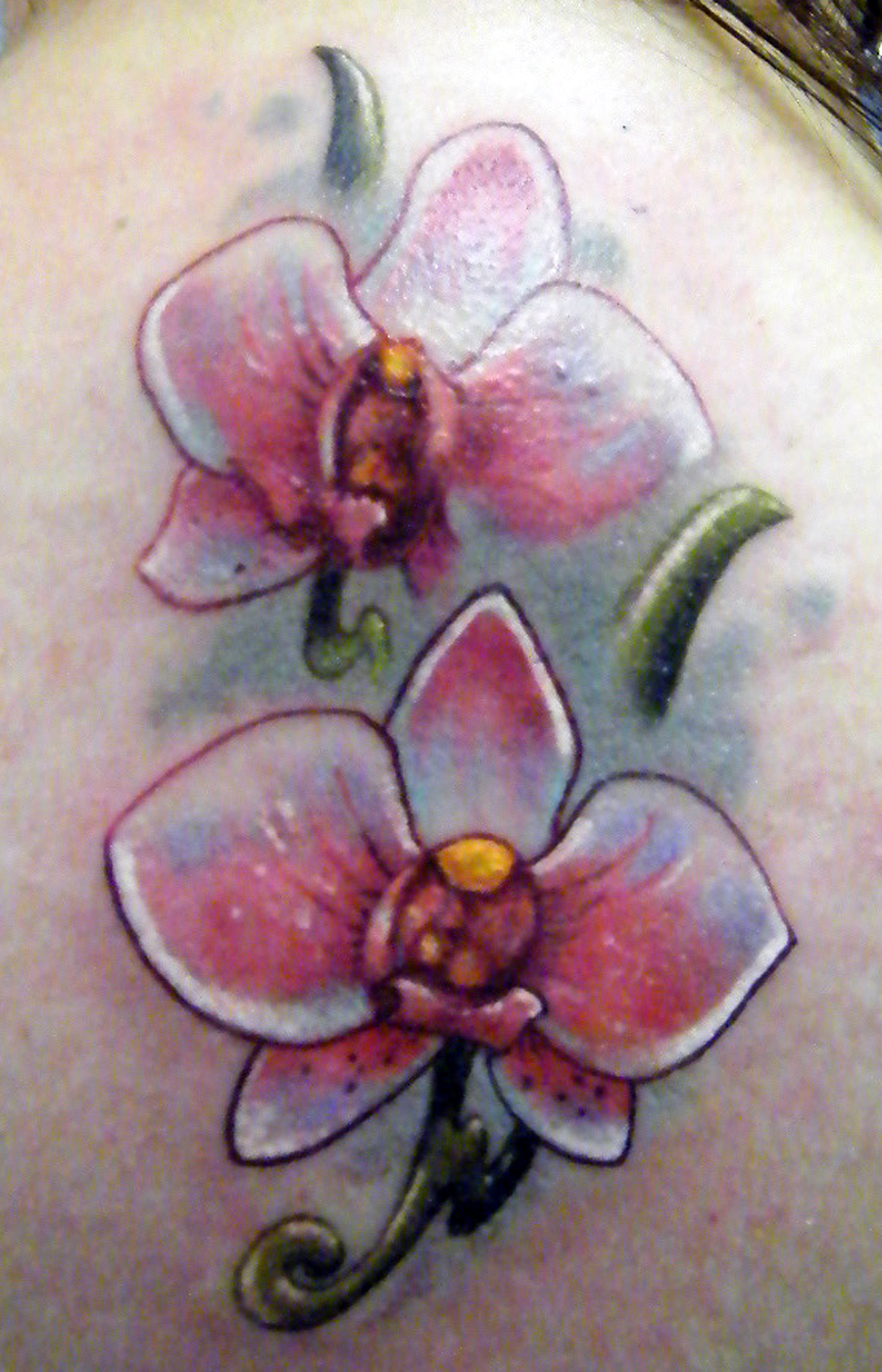 Orchid Tattoos Designs Ideas And Meaning Tattoos For You