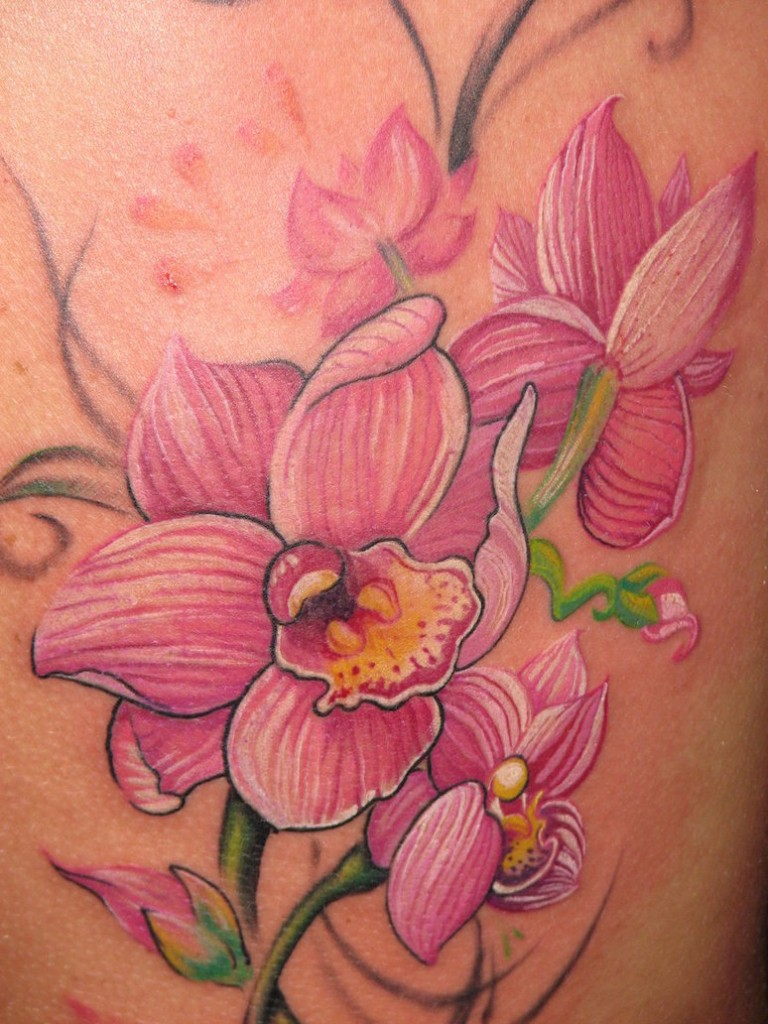 orchid tattoos designs ideas and meaning tattoos for you. Black Bedroom Furniture Sets. Home Design Ideas