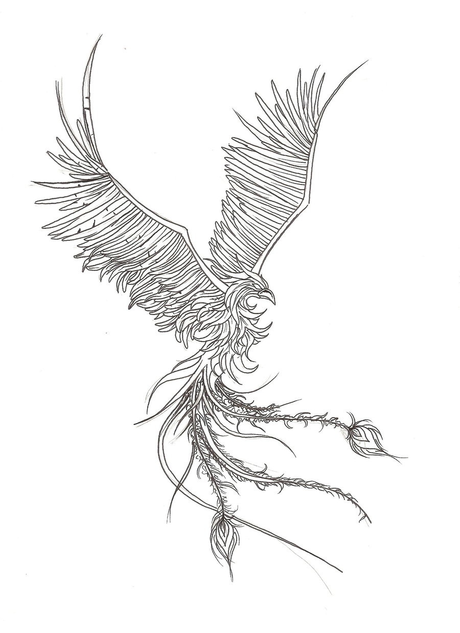 Phoenix Tattoos Designs Ideas And Meaning For You