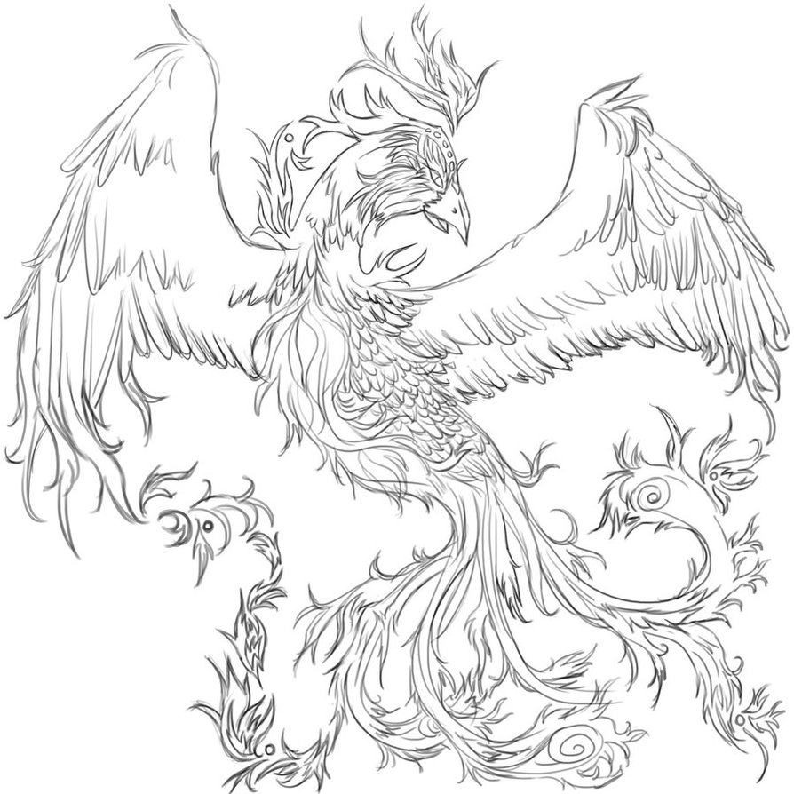 Tattoo Line Drawing Books : Phoenix tattoos designs ideas and meaning for you