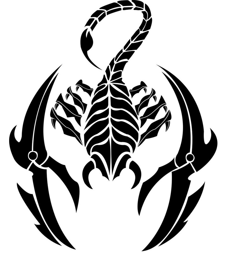 Tattoo Drawings: Scorpio Tattoos Designs, Ideas And Meaning