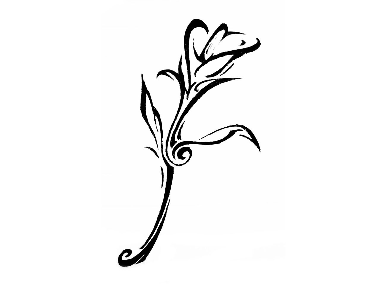 Flower meanings lily - Tribal Lily Tattoo Designs