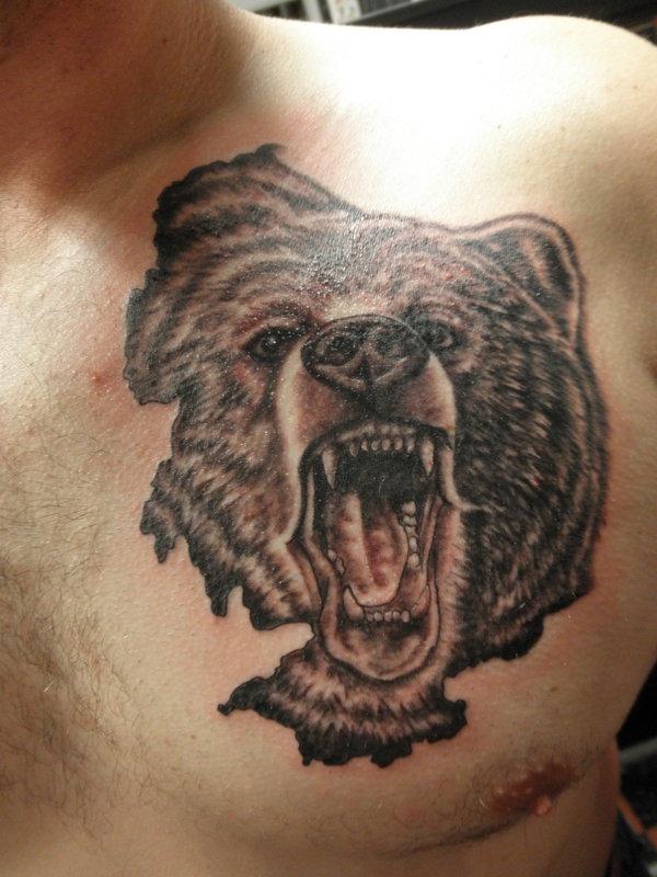 50 Traditional Bear Tattoo Designs For Men - Old School Ideas  |Bear Tattoo Chest