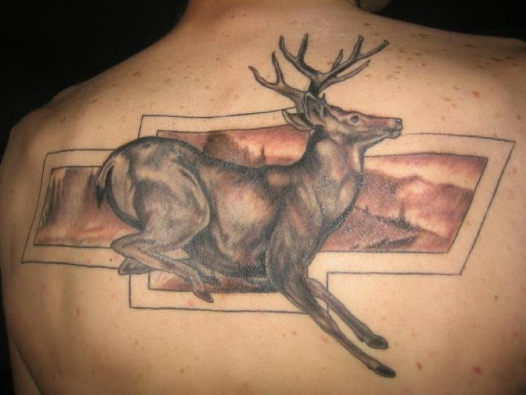 deer tattoos designs ideas and meaning tattoos for you. Black Bedroom Furniture Sets. Home Design Ideas