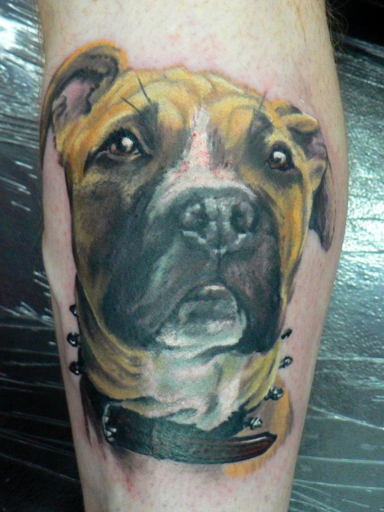 dog tattoos designs meaning