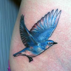 Bluebird Tattoos
