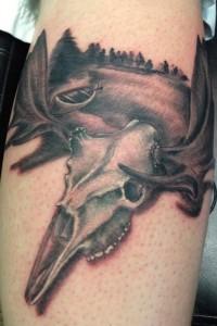 Moose Skull Tattoo