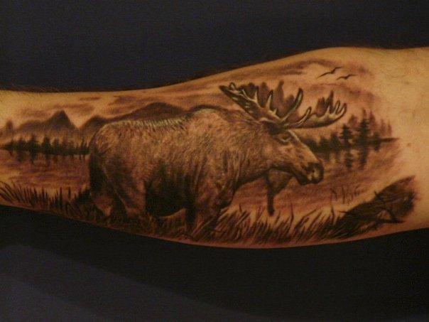 Moose Skull Tattoo | www.imgkid.com - The Image Kid Has It!
