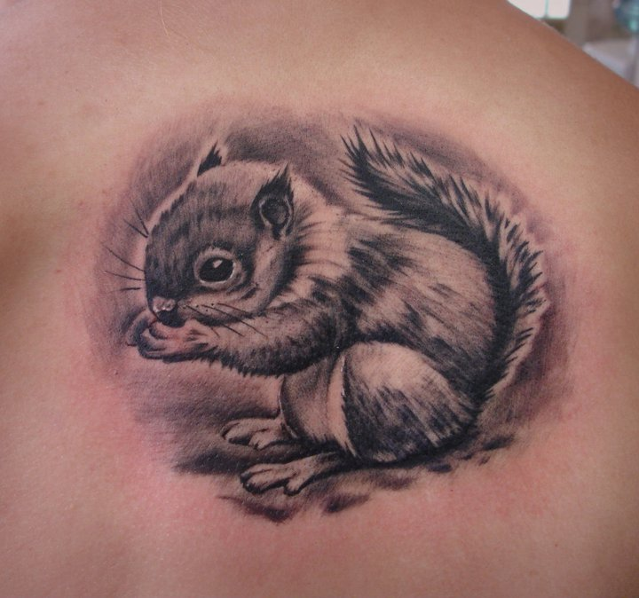 Squirrel Tattoos Designs, Ideas and Meaning   Tattoos For You