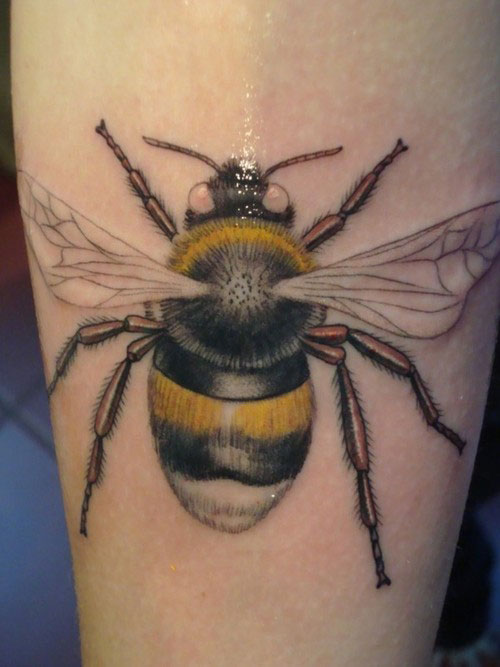 Beekeeping Tattoo: Bumble Bee Tattoos Designs, Ideas And Meaning