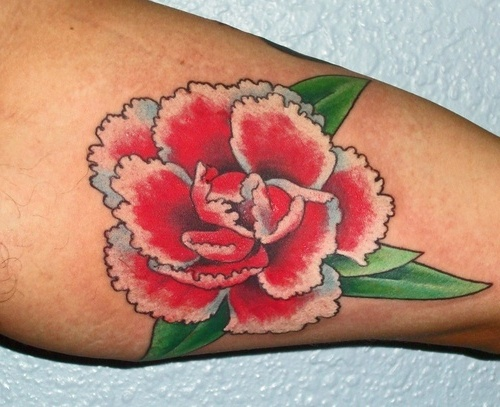 Carnation Tattoos Designs, Ideas and Meaning | Tattoos For You