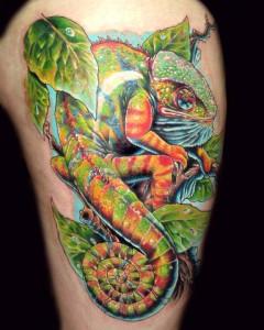 Chameleon Tattoo Images