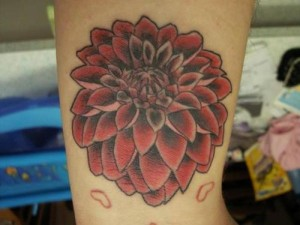 Dahlia Tattoo Pictures