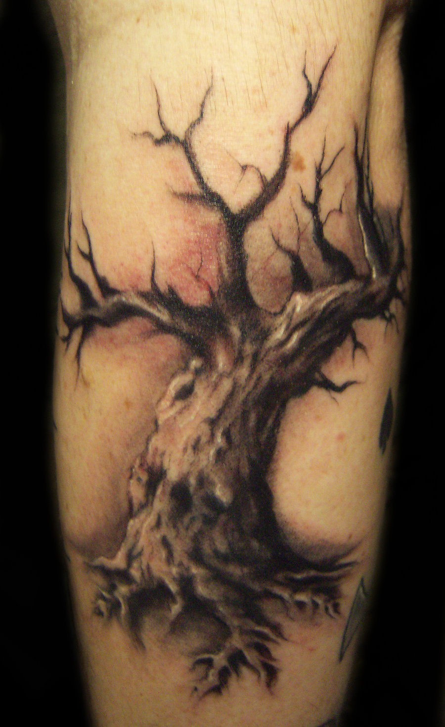 Dead tree tattoos designs ideas and meaning tattoos for you for Tattoo ideas and meanings
