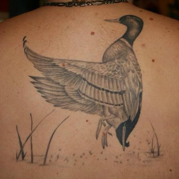 Duck Tattoos Designs Duck Tattoos Designs, ...