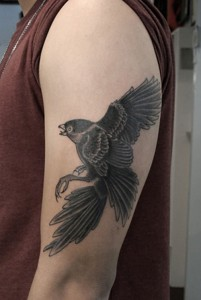 Falcon Tattoo Designs
