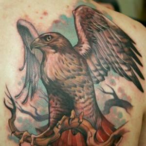 Hawk Tattoo Images