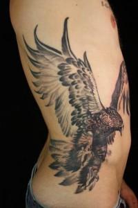 Hawk Tattoos