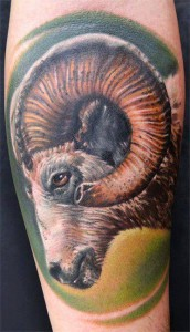Images of Goat Tattoo