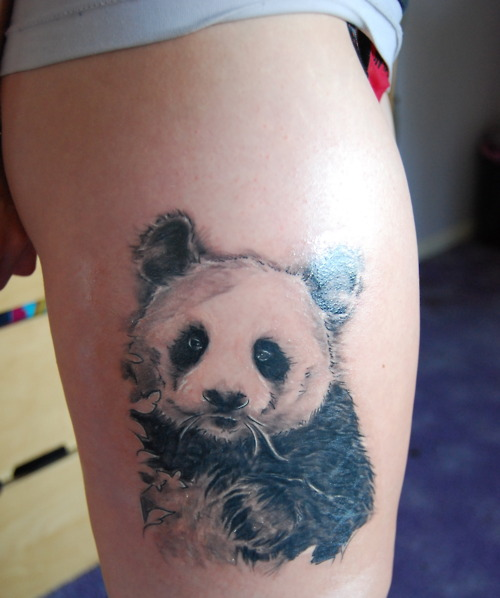 Ladybug Tattoos Designs Ideas And Meaning: Panda Tattoos Designs, Ideas And Meaning