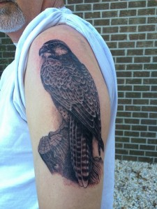 Peregrine Falcon Tattoo