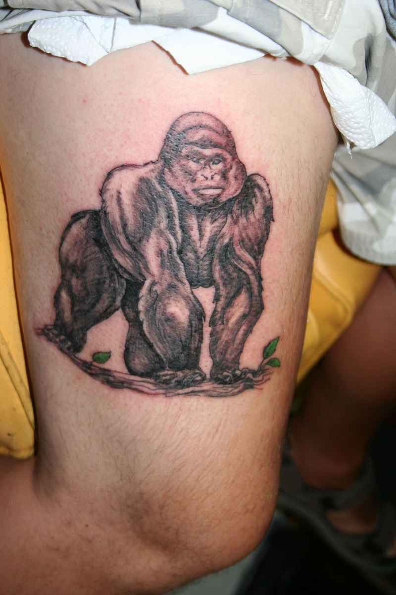 Gorilla Tattoos Designs, Ideas And Meaning