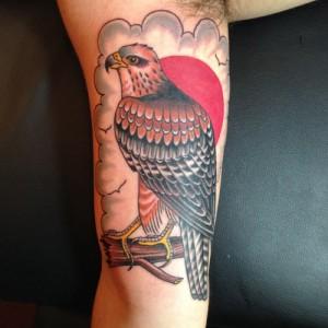 Traditional Hawk Tattoo